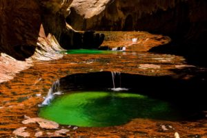 zion-national-park-emerald-pools-wallpaper-4